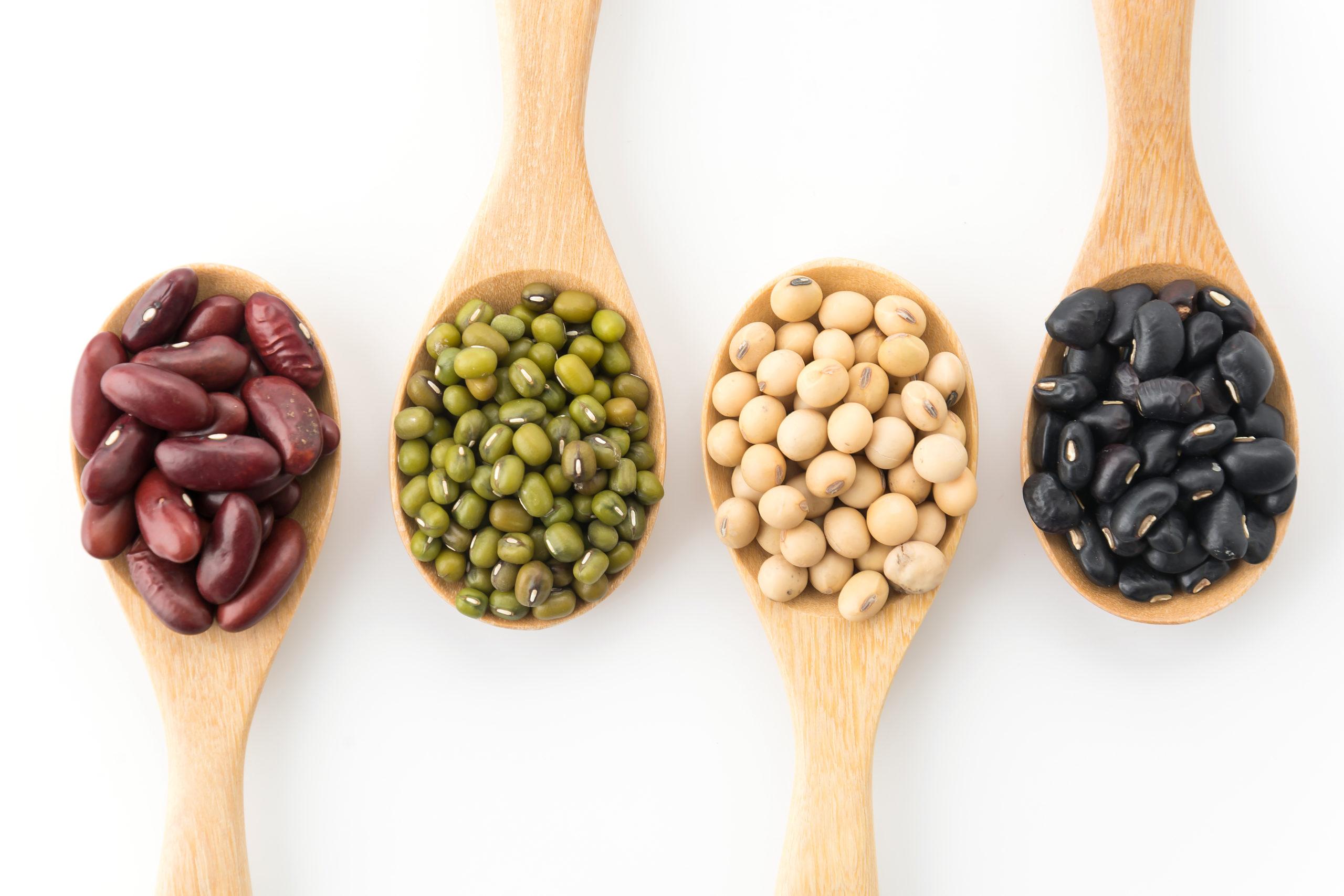 Melhores proteínas de origem vegetal